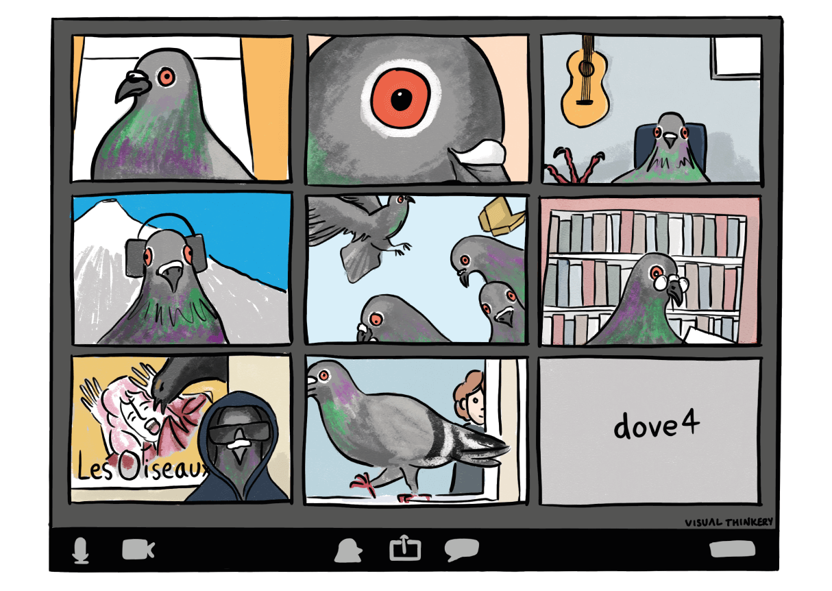 Zooming Pigeons (Hack Education)